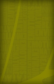 Patagonian International Marathon Yellow Green Grunge 2 Patagonia, Chile