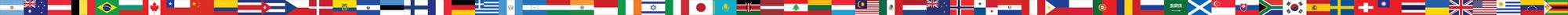Patagonia World Marathon Flags